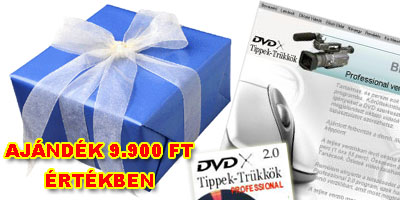 dvdX Tippek-Trükkök Professional 2.0